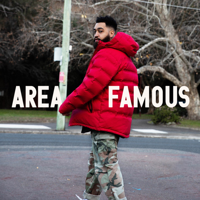 Album cover for Area Famous by B Wise