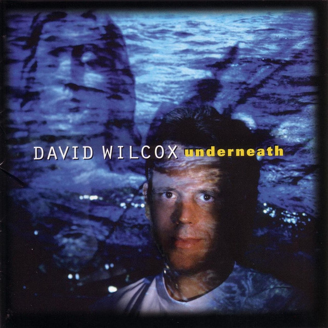David Wilcox Underneath album cover