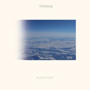 Terekke - Plant Age