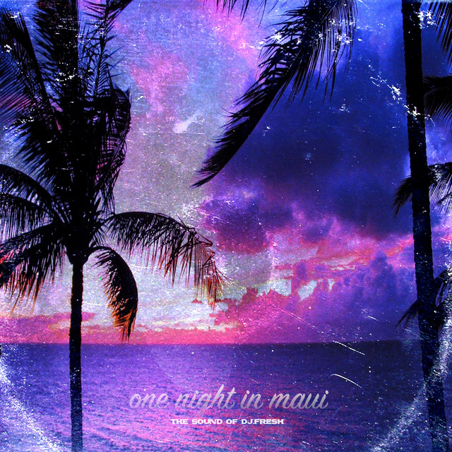 One Night In Maui