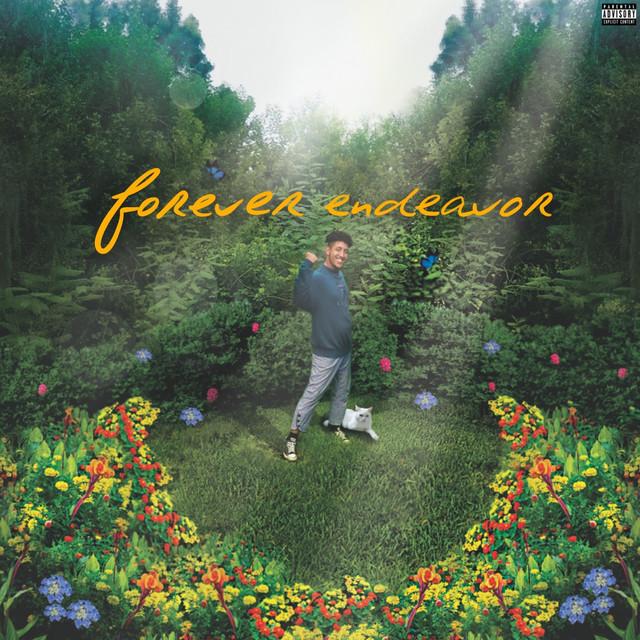 Album cover for Forever Endeavor by Enso-Stranger