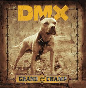 DMX The Rain cover