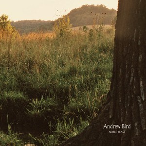 Noble Beast - Andrew Bird
