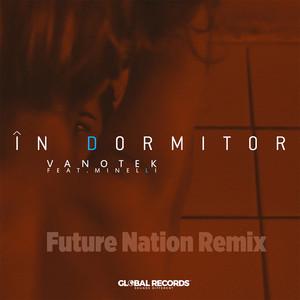 In Dormitor (Future Nation Remix) Albümü