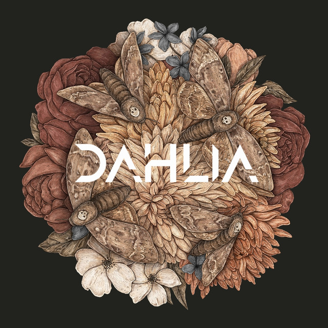 Image result for Dahlia- Blackness