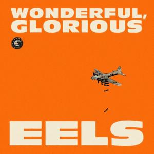 Wonderful, Glorious (Deluxe Version) album