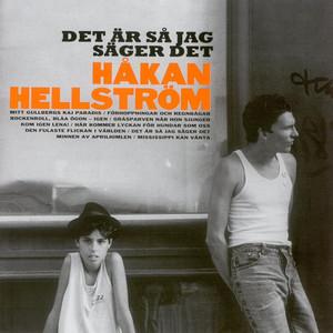Det är så jag säger det - Håkan Hellström