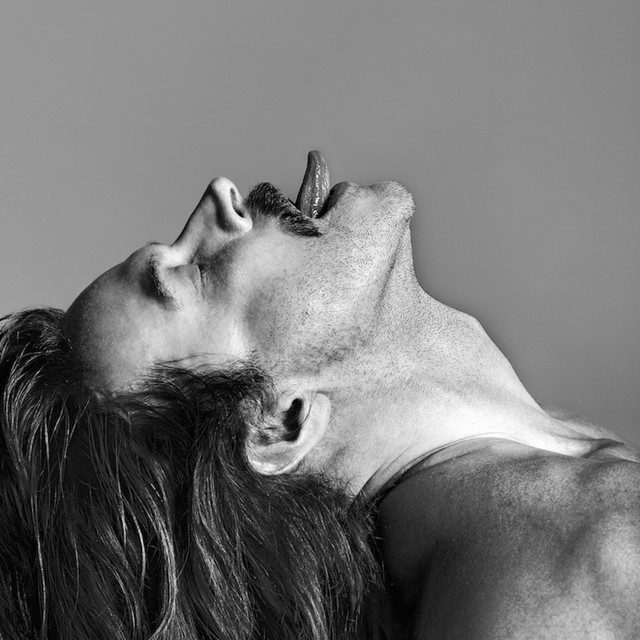 Album cover for Sir by Fischerspooner