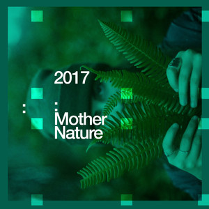 2017 Mother Nature
