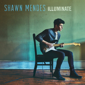 Shawn Mendes Lights On cover
