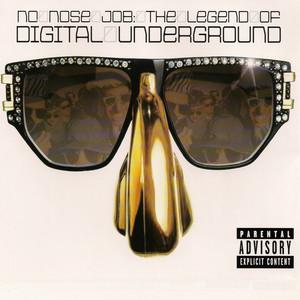 No Nose Job: The Legend of Digital Underground album