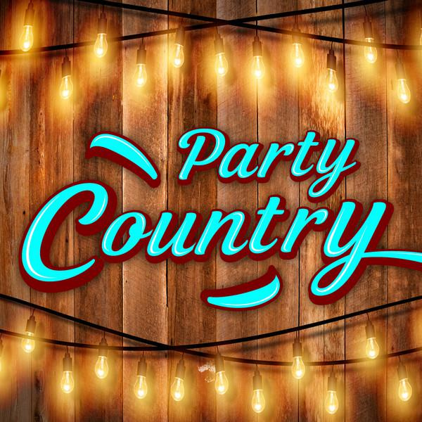 Various Artists Party Country album cover