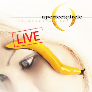 Thirteenth Step - Live album