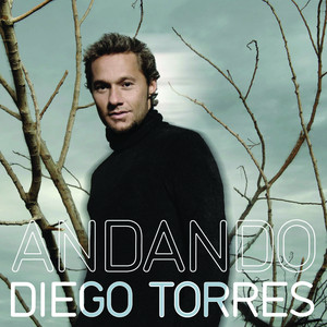 Diego Torres Volver cover