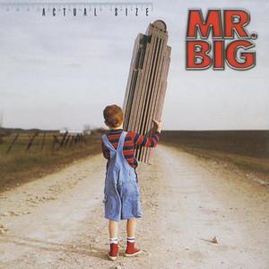 Actual Size album