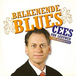 Cees Van Leeuwen