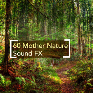 60 Mother Nature Sound FX