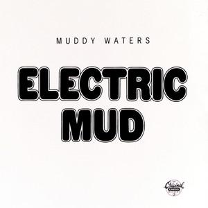 Electric Mud Albumcover
