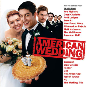 American Wedding  - Matt Nathanson