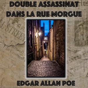 Double Assassinat dans la rue Morgue, Edgar Allan Poe (Livre audio) Audiobook