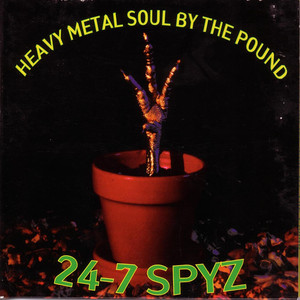 Heavy Metal Soul by the Pound album