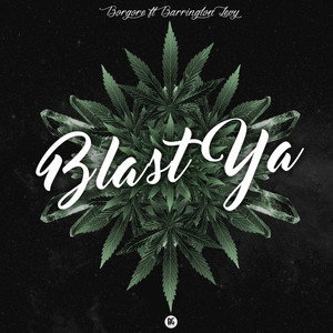 Blast Ya (feat. Barrington Levy)