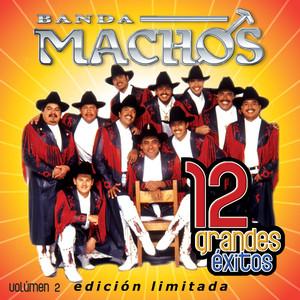 12 Grandes exitos Vol. 2 album