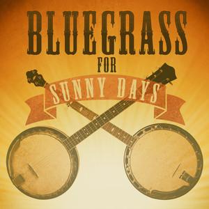 Bluegrass for Sunny Days album
