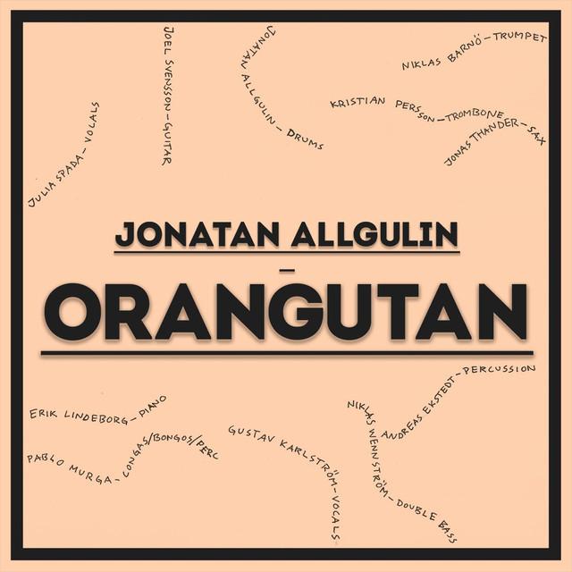 Jonatan Allgulin