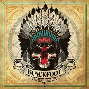 Southern Native album