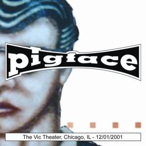 The Vic Theater, Chicago, IL 12/01/2001 album