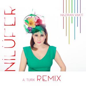 Haziran Vakti (A.Turk Remix) Albümü