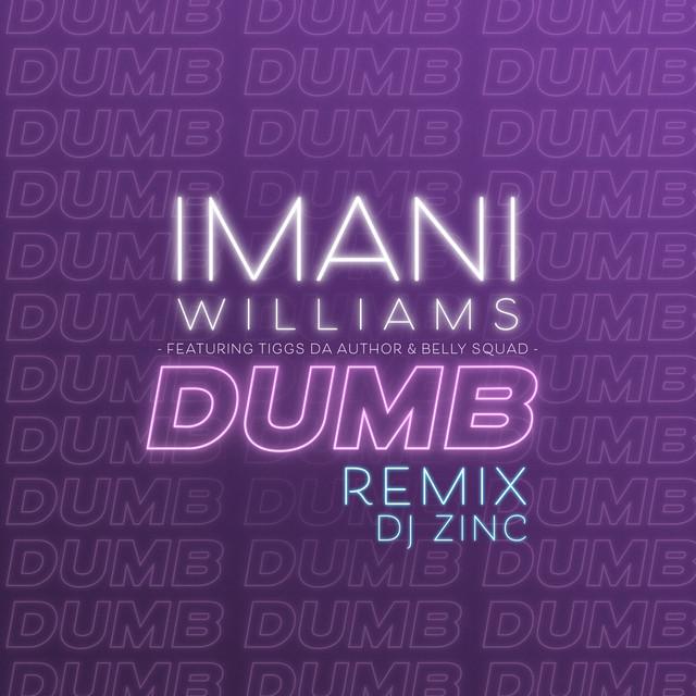 Dumb (feat. Tiggs Da Author & Belly Squad) [DJ Zinc Remix]
