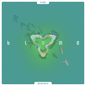 Fire (Remixes) Albümü