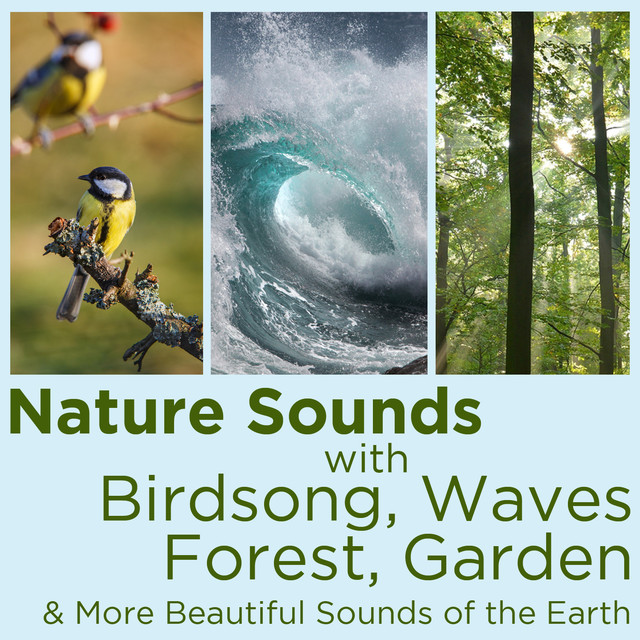 Nature Sounds with Birdsong, Waves, Forest, Garden, And More Beautiful Sounds of the Earth! Albumcover