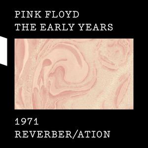 The Early Years 1971 REVERBER/ATION Albümü