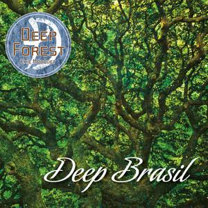 DEEP BRASIL album