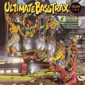 Ultimate Bass Trax, Volume 2 album