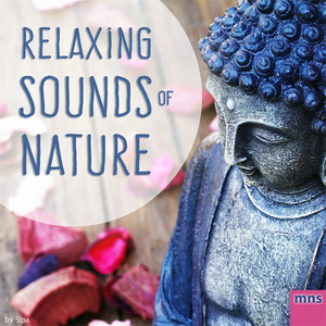 Relaxing Sounds of Nature Albumcover