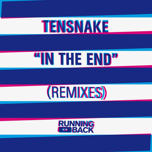 In The End (Remixes) album