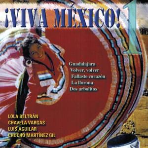 Mariachi Silvestre Vargas La Valentina cover