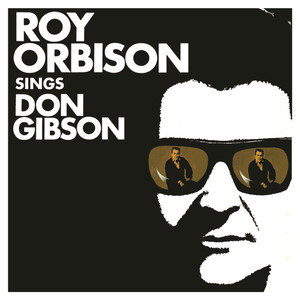 Sings Don Gibson album
