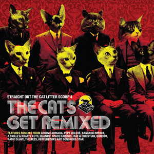 Straight Out The Cat Litter Scoop 4 (The Cats Get Remixed) album