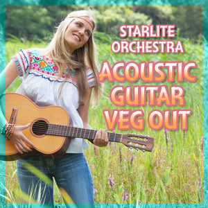 Acoustic Guitar Veg Out Albumcover