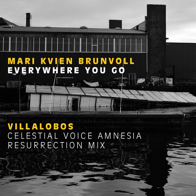 Everywhere You Go (Villalobos Celestial Voice Amnesia Resurrection Mix)