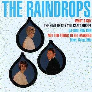 The Raindrops, Ellie Greenwich The Kind of Boy You Can't Forget cover
