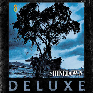Shinedown Stranger Inside cover