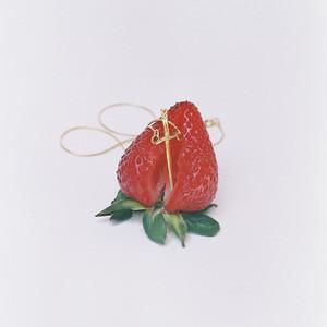 Ni Un Fruto - Denise Rosenthal