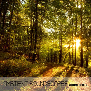 Ambient SoundScapes, Vol. 15