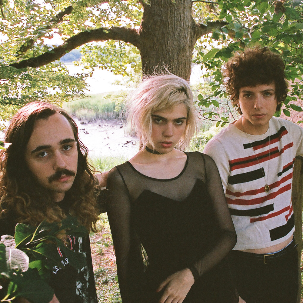 Image result for sunflower bean